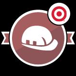 Target Safety